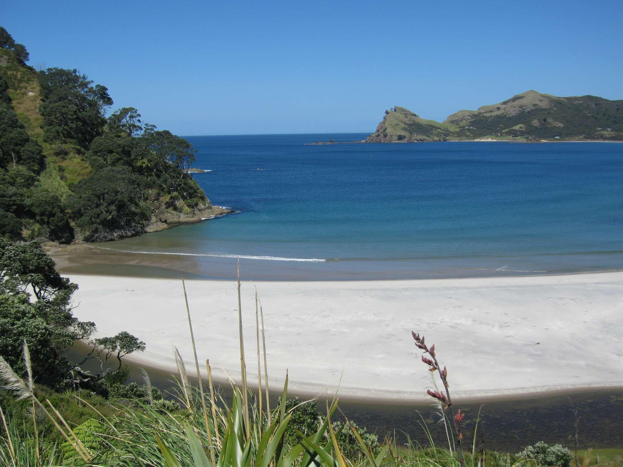 Medlands Beach - Great Barrier Island
